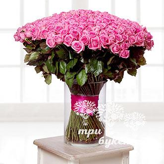 Букет из 201 розовой розы